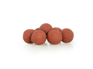 Sportcarp boilies Salmon & Maple