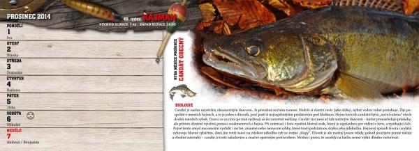 rybarsky kalendar 2014 KAJMAN Rybářský kalendář 2014 🎣 Na Soutoku rybarsky kalendar 2014