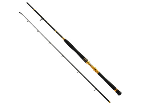 GIANTS FISHING Prut Deluxe Boat 2,1m 50lb