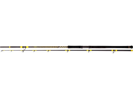 PASSION PRO DX LONG RANGE 3,30M 600G